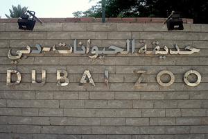 В Дубаи строят новый зоопарк
