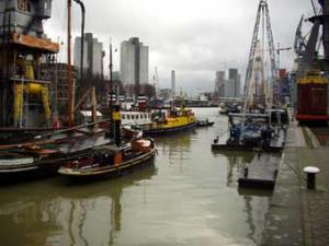 Cпециалисты подтвердили «халяльность» голландского порта