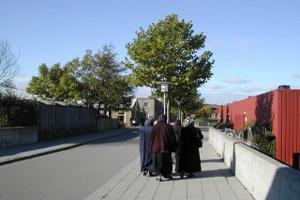 Датчане против законопроекта, запрещающего хиджаб