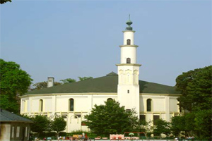 В Бельгии официально признаны 43 мечети