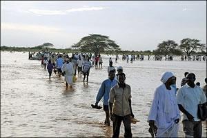 ОАЭ и Катар оказывают помощь Судану