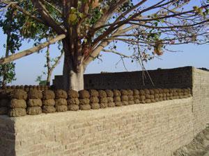 """""""Альтернативное топливо"""" сушится на глиняном заборе в пакистанской деревне, неподалеку от местной церкви (фото IslamNews)."""