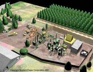 Арабы в Челябинской области построят завод