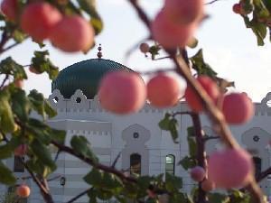 Мечеть в Ирвинге.