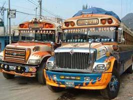 В Мехико появились автобусы только для женщин