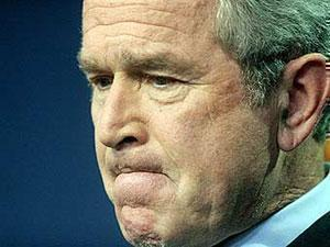 Буш пожаловался шейхам на слишком высокие цены
