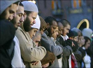 Мусульмане становятся на защиту Дании