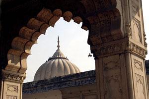 Индийские богословы призвали ООН бороться с богохульством в мировом масштабе