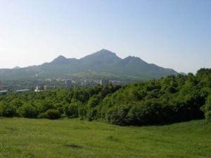 В Ставрополье появилось 16 сертифицированных проповедников ислама