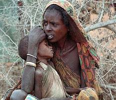 Надвигающийся продовольственный кризис обречет на голод сотни тысяч людей