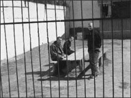 Бывшим заключенным дадут работу в Карелии