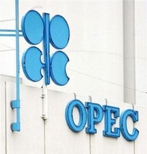 Генсек ОПЕК поддержал инициативу Ирана по введению собственной валюты