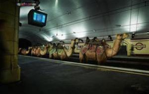 В столице ОАЭ построят метро