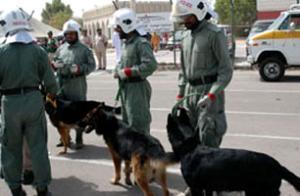 Полиция Дубаи