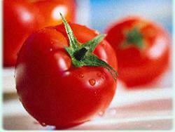 Россия вводит ограничения на импорт турецких продуктов