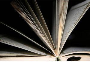 Алексей Гришин предлагает создать экспертный совет по оценке текстов исламских книг
