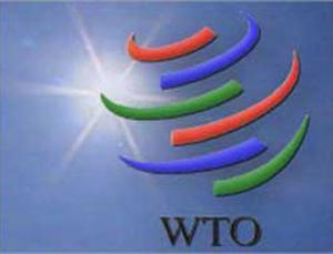 Россия договорилась с Саудовской Аравией о вступлении в ВТО