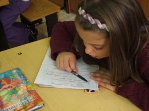 В начальных классах Чечни введут преподавание на родном языке