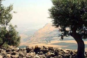 В Галилее планируется построить современный город для арабов