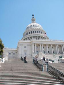 Сезон терактов в США – политическая акция