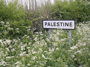 Правозащитники: израильтяне виновны в смерти палестинских младенцев