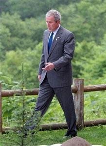"""Дж. Буш попросил у бамбука """"мира во всем мире"""""""