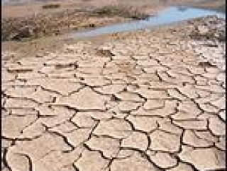 Исламские страны озабочены проблемами экологии