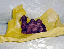 В ОАЭ начали выпускать шоколад из верблюжьего молока