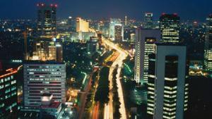 Индонезия расширит экспорт в Россию