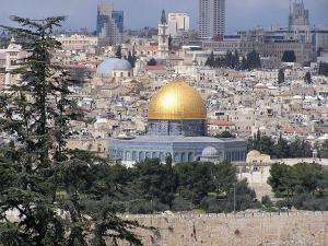 Иерусалимские арабы не поддержали  Гайдамака