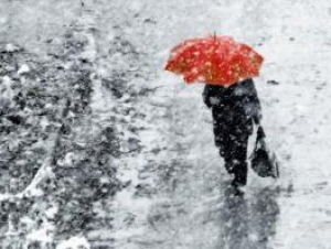 Гидрометцентр: снег будет не раньше 20-х чисел декабря
