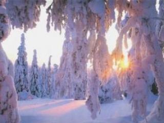Завтра в Москве начнется зима