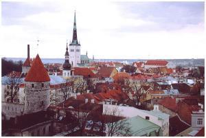 Власти ОАЭ предложили построить в Таллине первую мечеть
