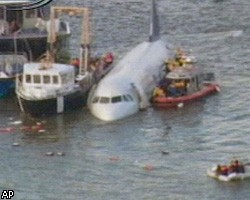 В оба двигателя самолета попали птицы