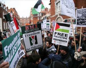 Еврейская организация хочет судиться с демонстрантами, выступающими в защиту Палестины