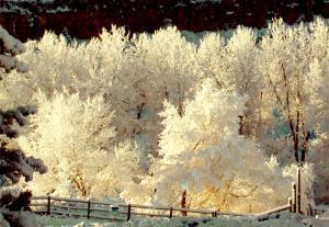 Урал завалило желтым снегом