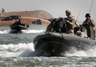 В маневрах, цели которых не указываются, задействованы 30 боевых судов