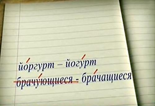 Новые нормы словесности вызвали бурную реакцию россиян