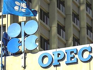 ОПЕК обвиняет Россию в захвате рынка