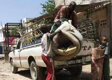 Многие сомалийцы, особенно молодежь, бегут от войны и бедности