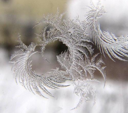 В Центральной части России сохранится аномально холодная погода