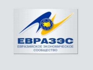 Единое экономическое пространство ЕврАзЭС заработает к 2012 году