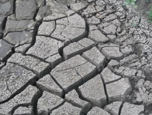 Предчувствие экологического Апокалипсиса
