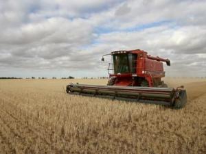 Исламский банк развития поможет фермерам Казахстана (ДОПОЛНЕНО)