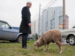 Московские власти организовали торговлю баранами у мечети в Отрадном?