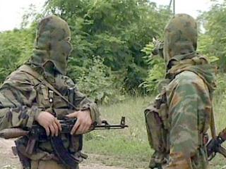Боевики покинули горы Чечни — власти