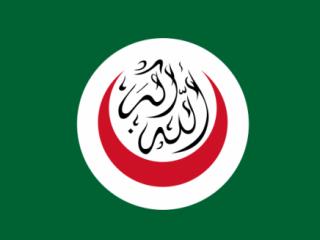 В июне 2011 года в Астане пройдет 38-й Совет министров иностранных дел ОИК