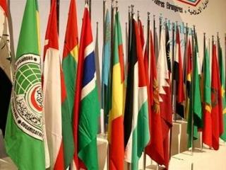 Опыт толерантности Казахстана не применим ко всем странам ОИК