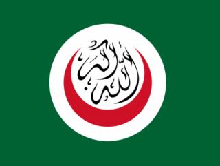 ОИК призывает арабские страны признать трагедию Ходжалы преступлением против человечества