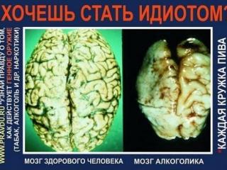 Пьяный да сонный не свою думу думает - русская пословица